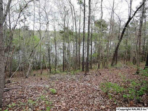 14 Bent Oak Cir., Arley, AL 35541 Photo 13