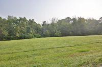 Home for sale: 344 Henry Veech Rd., Finchville, KY 40022