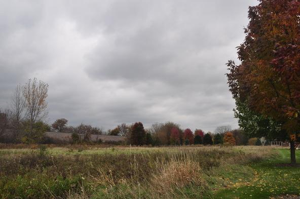 Lot 2 Savanna Lakes Dr., Elgin, IL 60124 Photo 3