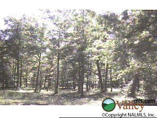 125 Mountain Oaks Dr., Gurley, AL 35748 Photo 1