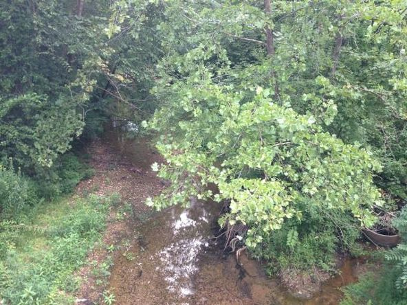 2 Tn River Blue Ck Rd., Waverly, TN 37185 Photo 2