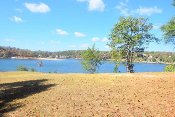 165 County Rd. 225, Crane Hill, AL 35053 Photo 7