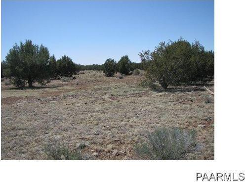 292 Sabrina, Ash Fork, AZ 86320 Photo 16