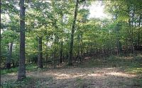 Home for sale: Lot 1 Hopper Rd., Rogers, AR 72756