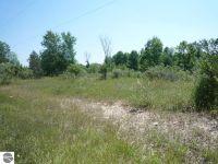 Home for sale: 1300 W. Deerfield, Mount Pleasant, MI 48858