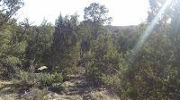 Home for sale: 3634 Bobcat Trail, Overgaard, AZ 85933