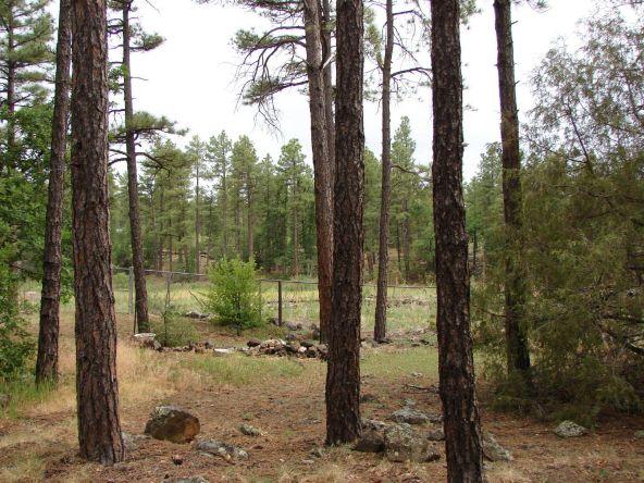 1083 W. Apache Ln., Lakeside, AZ 85929 Photo 21