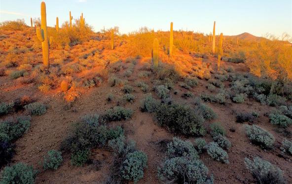 41000 N. 7th St., Phoenix, AZ 85086 Photo 24