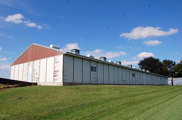 2445 370th St., Boyd, MN 56218 Photo 30