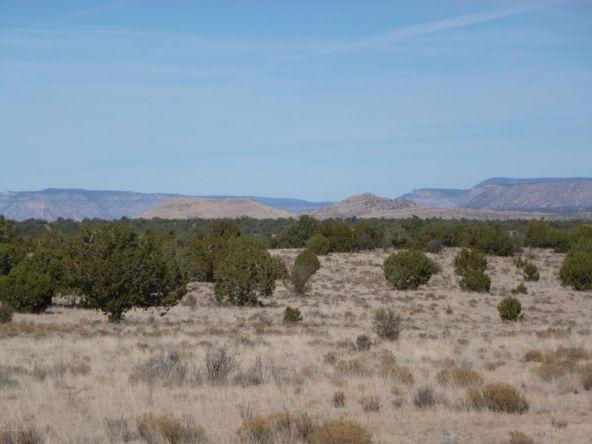 45678 N. Peaceful Hill Rd., Seligman, AZ 86337 Photo 2