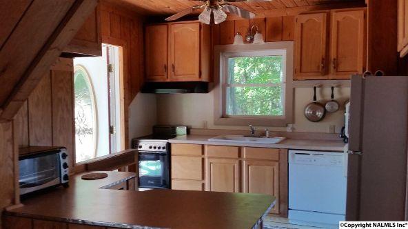 1005 County Rd. 509, Cedar Bluff, AL 35959 Photo 11