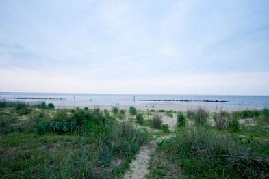 878 West Ocean View Avenue, Norfolk, VA 23503 Photo 11