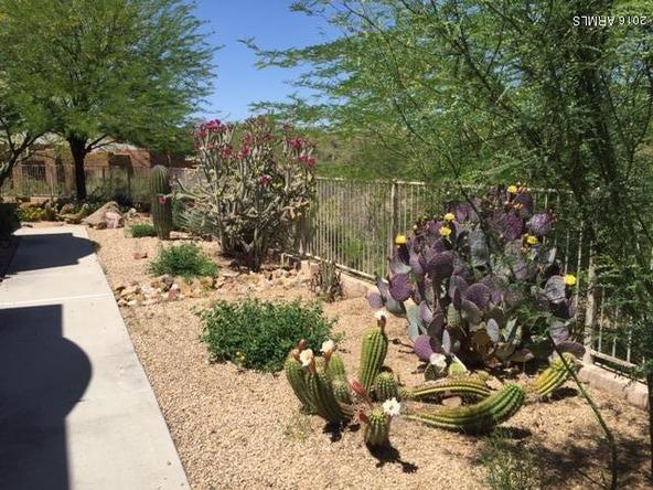 6898 E. Stevens Rd., Cave Creek, AZ 85331 Photo 3