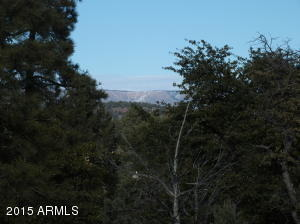 618 N. Grapevine Dr., Payson, AZ 85541 Photo 5