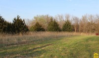 Home for sale: 66 S.E. Hwy. Pp, Clinton, MO 64735