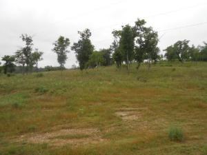 18874 Hwy. 7, Lead Hill, AR 72644 Photo 10