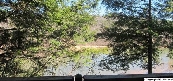 133 Cane Creek Overlook, Double Springs, AL 35553 Photo 14