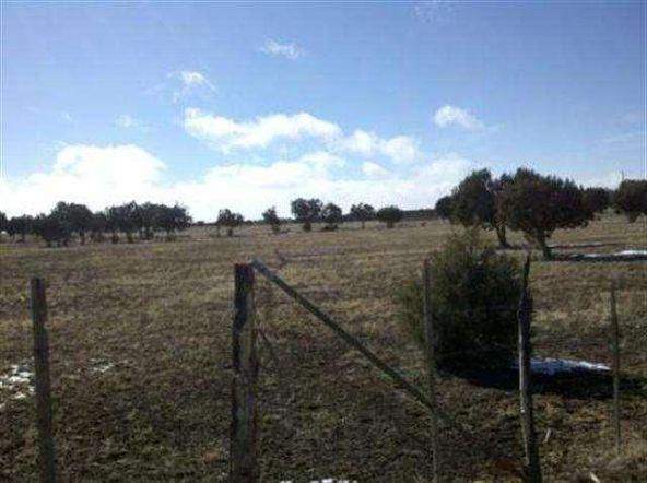 21 Acres Turkey Lake Rd., Show Low, AZ 85901 Photo 24