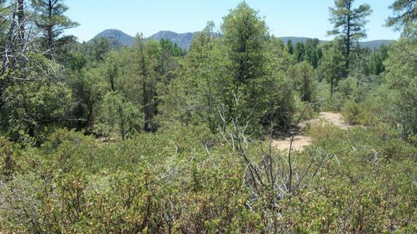 509 N. Chaparral Pines Dr., Payson, AZ 85541 Photo 15