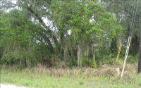 Home for sale: 2739 N. Brandon Rd., Avon Park, FL 33825