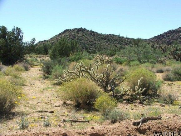 3578-B E. Desert Willow Dr., Yucca, AZ 86438 Photo 3