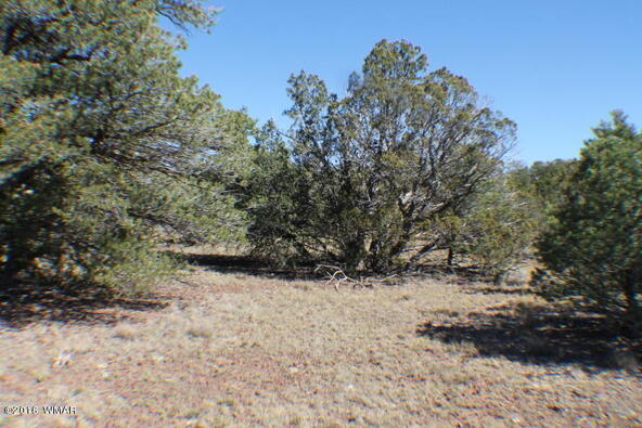 8 Acres Off Of Acr N. 3114, Vernon, AZ 85940 Photo 3