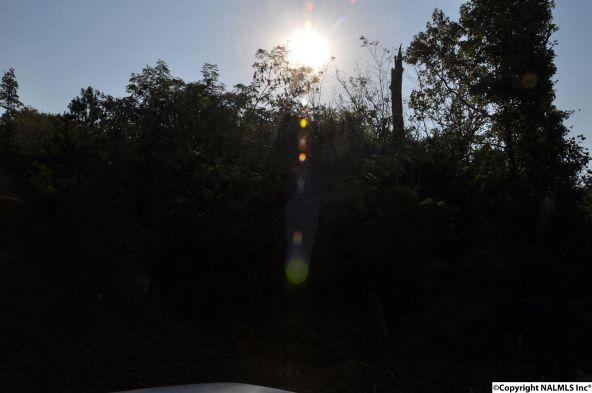 521 Nesmith Rd., Guntersville, AL 35976 Photo 2