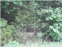 Home for sale: 0 Back Valley Rd., Trenton, GA 30752