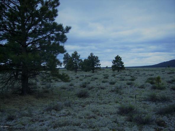 10558 E. White Horse Lake, Parks, AZ 86018 Photo 24