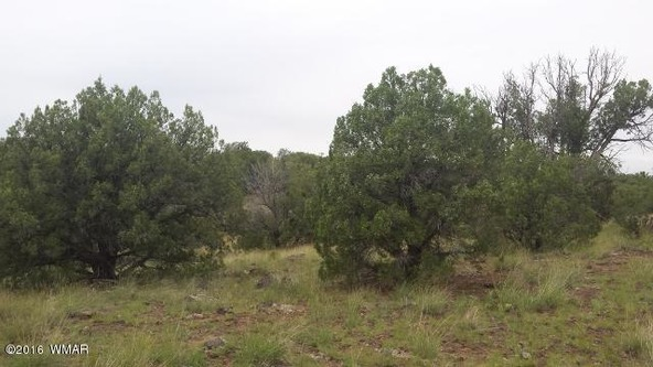 8273 Ridge Dr., Show Low, AZ 85901 Photo 5