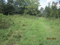 Home for sale: 151 Boyce Guin Rd., Tignall, GA 30668