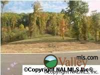 806 Lakewood Dr., Fort Payne, AL 35967 Photo 1