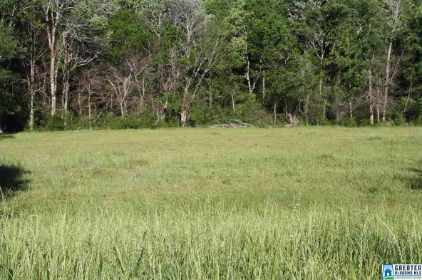 6898 Co Rd. 36, Altoona, AL 35952 Photo 2