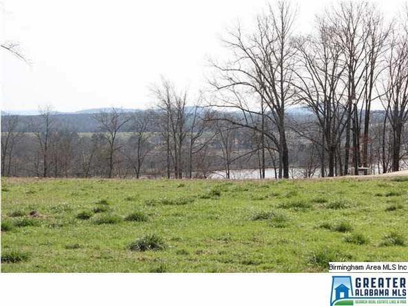 112 Overlook Ridge, Lincoln, AL 35096 Photo 5