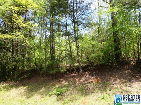 32 Acres Lystra Rd., Ashland, AL 36251 Photo 6