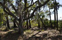 Home for sale: 1054 Curisha Point S., Saint Helena Island, SC 29920