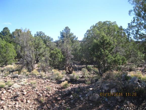 00 N. Willows Ranch Rd., Kingman, AZ 86401 Photo 1