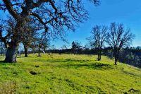 Home for sale: 000 Coal Pit Rd., Igo, CA 96047