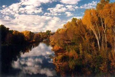 980 N. Aspaas Rd., Cornville, AZ 86325 Photo 6