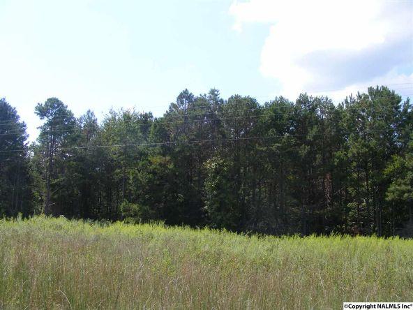 1030 County Rd. 664, Valley Head, AL 35989 Photo 2