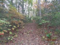 Home for sale: Lot 7 Brigsy Ln., Whittier, NC 28789