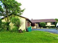 Home for sale: 925 Amber Ln., Lake Villa, IL 60046