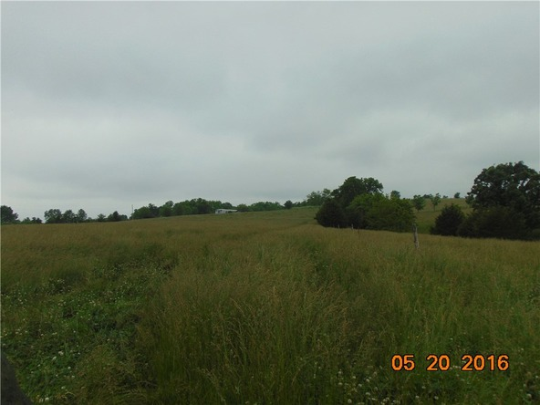 80 County Rd. 638, Green Forest, AR 72638 Photo 17