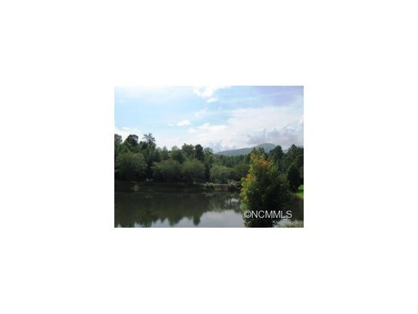 103 Cornell Cir., Lake Lure, NC 28746 Photo 8