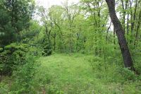 Home for sale: Lot 3 6th Ave., Grand Marsh, WI 53936