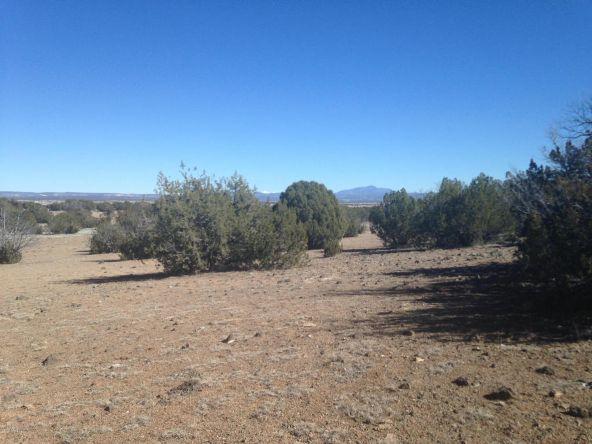 246 Antelope Run, Ash Fork, AZ 86320 Photo 3