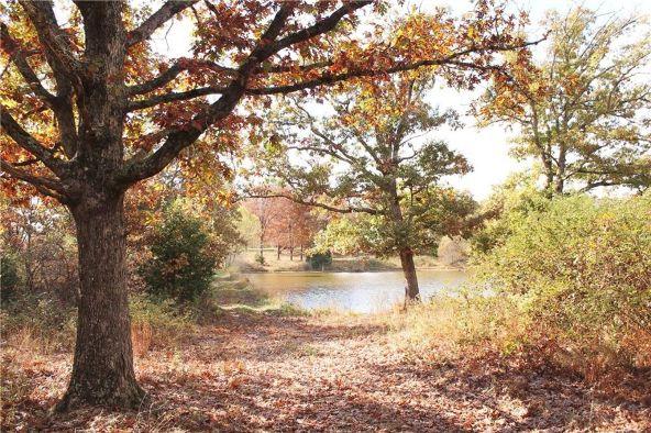 18509 Parks Cemetery Rd., Winslow, AR 72959 Photo 27
