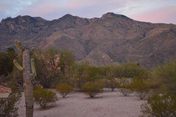 5631 N. Paseo Otono, Tucson, AZ 85750 Photo 28