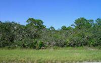 Home for sale: 3218 Lake Josephine Dr., Sebring, FL 33875