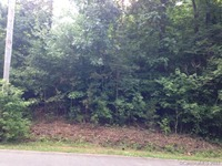 Home for sale: Lot 12 New Castle Ct., Albemarle, NC 28001